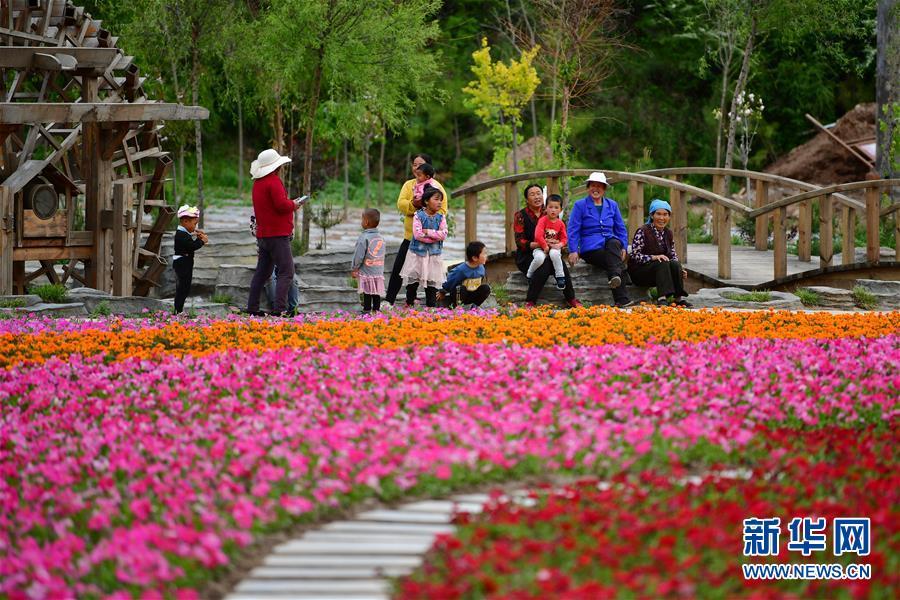 甘南藏区旅游打造乡村振兴绿色引