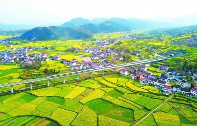 西藏初步建立湿地保护体系